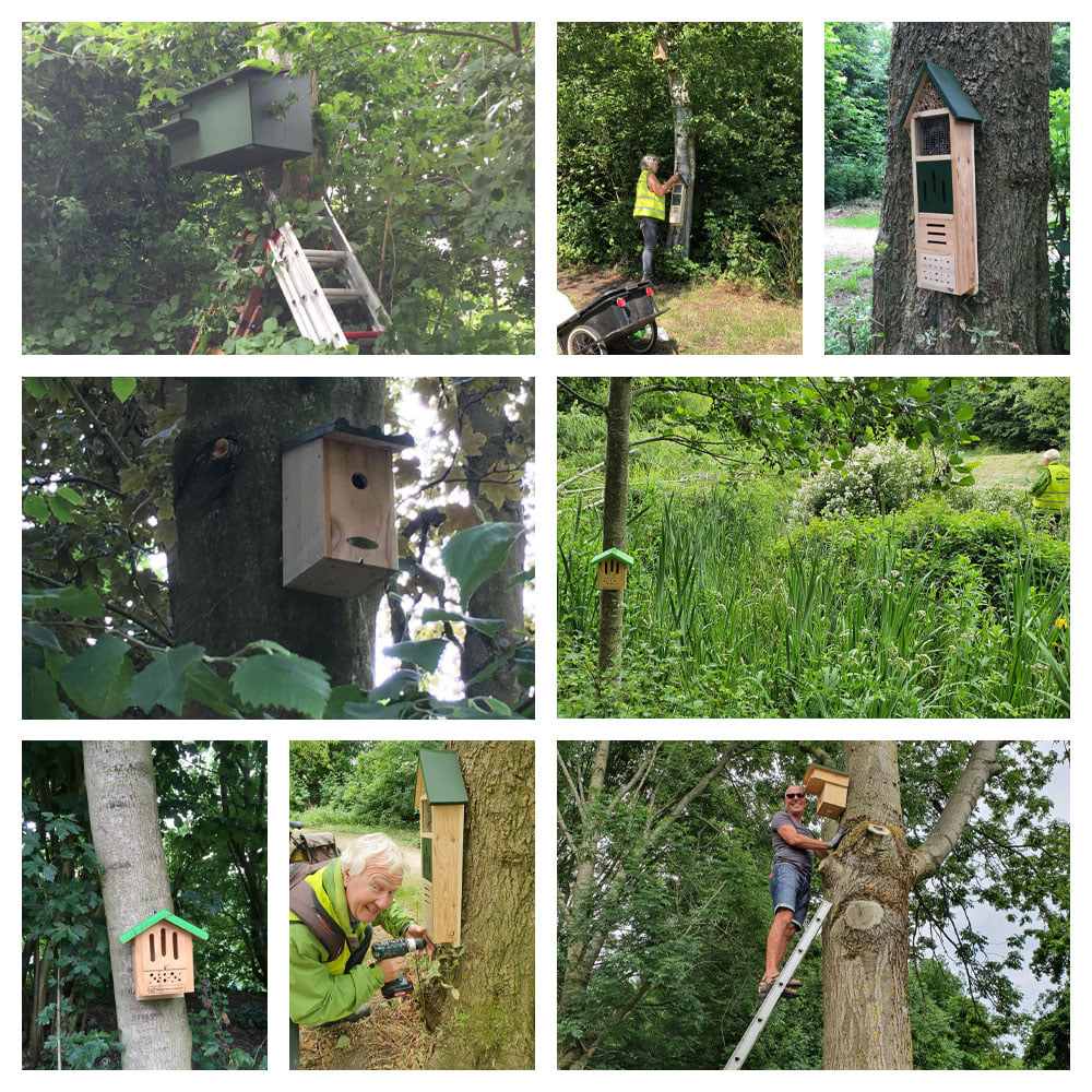 De bomen van Wijkpark Maarssenbroek hebben allerlei soorten nestkastjes.